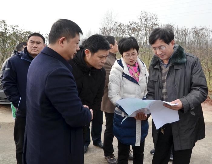 杨文萍调研汊河经开区及滁宁城铁项目建设情况